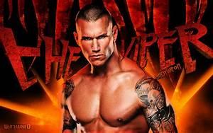 Randy Orton - WWE Fan Art (35305149) - Fanpop  Randy