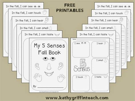 kathy griffin s teaching strategies five senses and fall 714 | Slide1