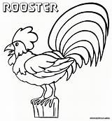 Rooster Coloring Fence Colorings Sheet Coloringway sketch template