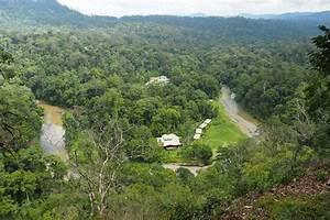 Borneo Rainforest Lodge - Danum Valley, Sabah, Borneo ...