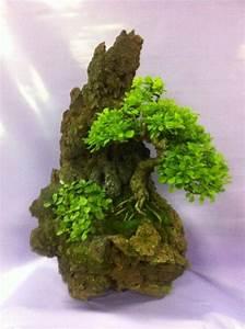 Die Schönsten Gartenbäume : 116 besten bonsai gz bilder auf pinterest bonsai ~ Michelbontemps.com Haus und Dekorationen