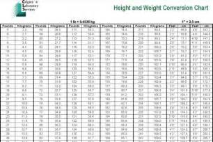 Profit And Loss Excel Template Weight Chart Free Premium Templates Forms Sles For Jpeg Png Pdf Word And