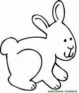 Bunny Rabbit Coloring Pages Views sketch template