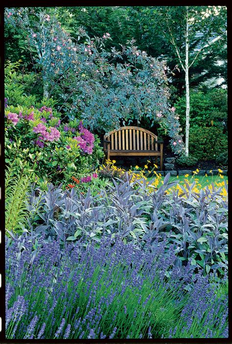 cottage guide how to grow a cottage garden sunset magazine