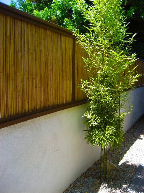 superb bamboo fencing innovative designs  landscape