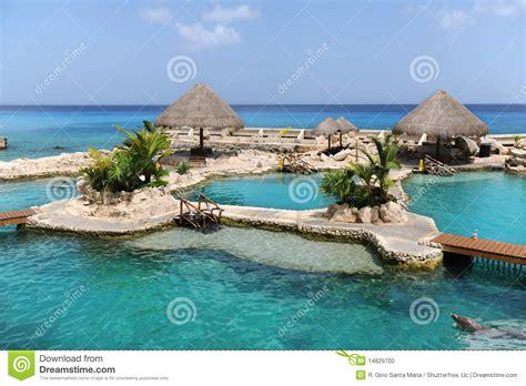 Dolphinarium Dans Cozumel Mexique Photo stock - Image