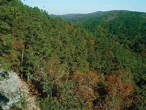 Travels in Geology: Arkansas: A geologic diamond in the ...