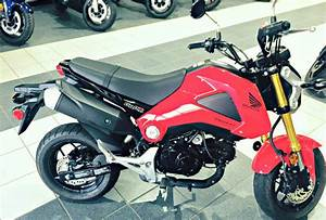 Honda Moto Orleans : honda grom motorcycles for sale in louisiana ~ Melissatoandfro.com Idées de Décoration