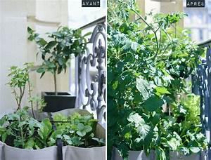Faire Un Petit Potager En Carré : mon jardin en ville am nager un balcon faire un potager bacsac chez vous jardins ~ Melissatoandfro.com Idées de Décoration