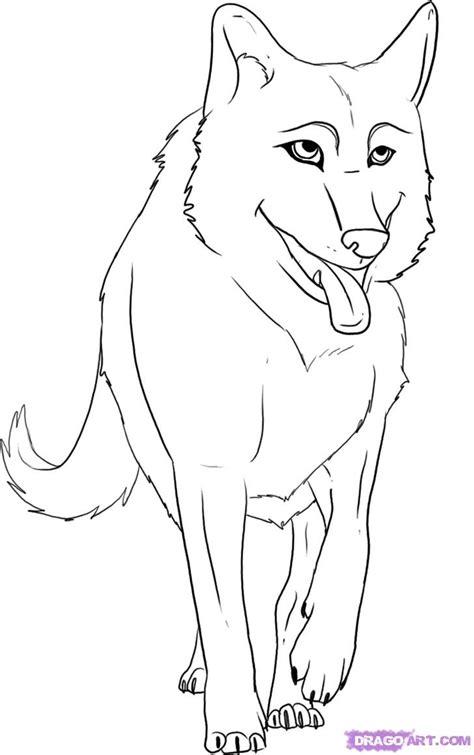 draw  cartoon wolf step  step forest animals