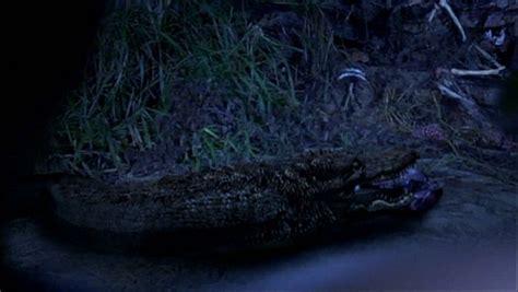 imcdborg lockjaw rise   kulev serpent