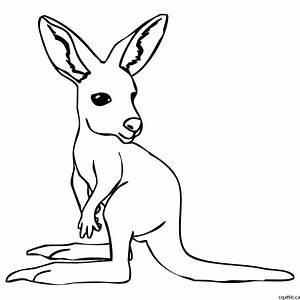 Kangaroo Cartoon Drawing In 4 Steps With Photoshop