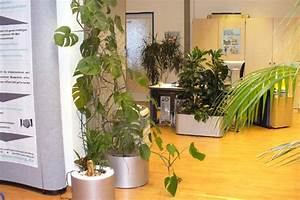 Feng Shui Eingangsbereich : b ro feng shui entdecken ~ Articles-book.com Haus und Dekorationen