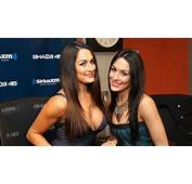 The Bella Twins Wallpapers  Wallpaper Cave