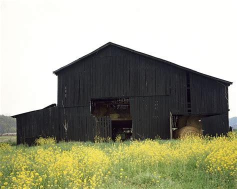 Black Tobacco Barn, Kentucky