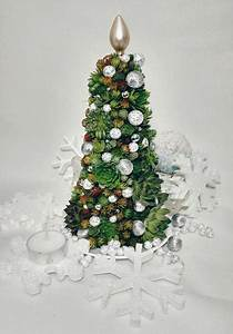 Christmas Ornaments Lights Balls 25 Modern Ideas To Design Live Christmas Trees With Succulents