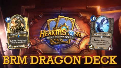hearthstone dragon deck paladin youtube