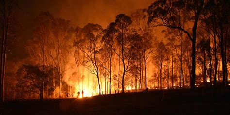 nz salvation army staff respond  australian bush fires