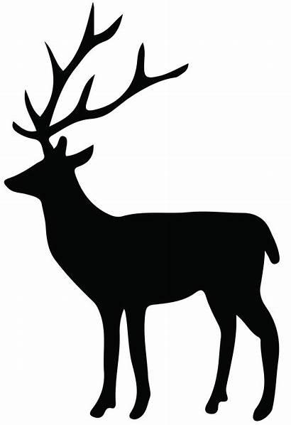 Reindeer Silhouette Deer Transparent Tailed Clipart Freepngclipart