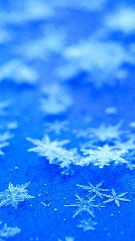 Artsy Backgrounds For Iphone Winter by Icy Snowflake Flower Blue Background Iphone 5s