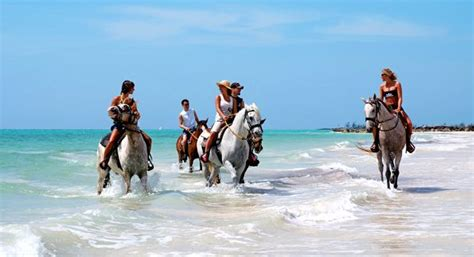 actividades en bahamas images  pinterest