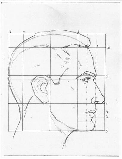 Drawing Profile Head Loomis Andrew Space Profiles