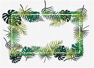 tropical leaf decoration vector png leaf frame tropical