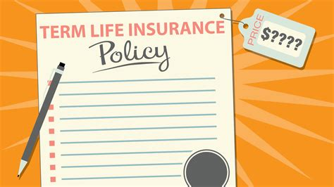 How Much Does Term Life Insurance Cost?
