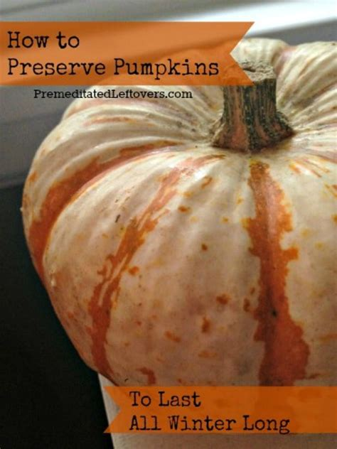 how to preserve pumpkins during the winter