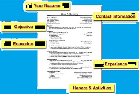 resume format for freshers resume sles for freshers