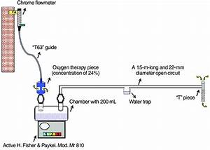 The Components And Assembly Of Active Humidification
