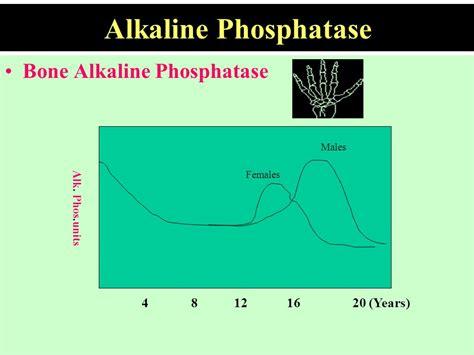 normal range for alkaline phosphatase bone specific alkaline phosphatase normal range 28 images serum bone specific alkaline