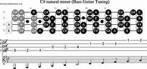 Bass Guitar Scale C Sharp Minor
