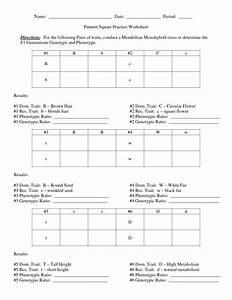 87 Corvette Wiring Diagram Free Download