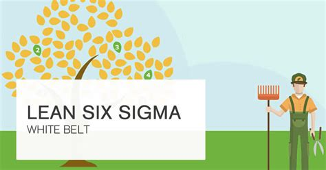 Free Courses by Free Six Sigma Course 100 Effective