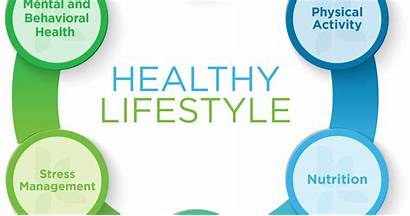 Wheel Health Wellness Track Keep Help