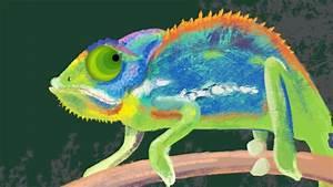 Chameleon Animation - YouTube