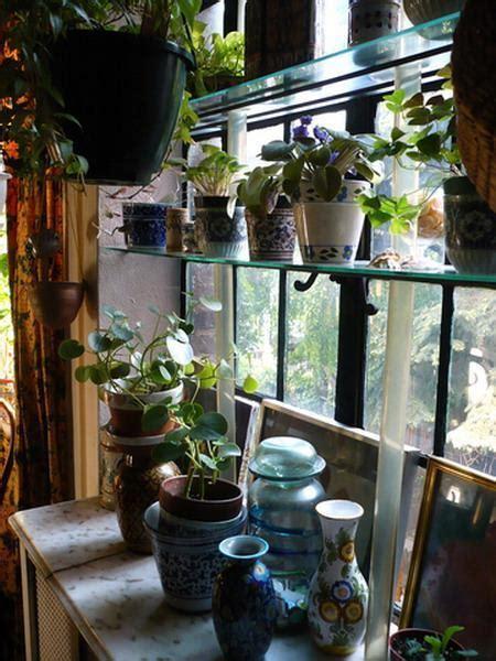 stationary window designs  window decorating ideas  glass shelves
