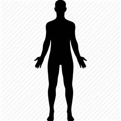Human Icon Vector Diagram Clipart Silhouette Transparent