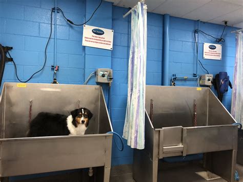 Petsmart denver co locations, hours, phone number, map and driving directions. PET STATION - 35 Photos & 94 Reviews - Pet Stores - 2300 S ...