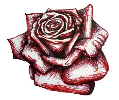 drawing   rose   clip art  clip