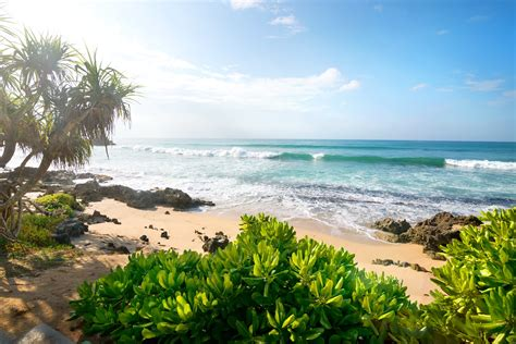 tropical summer beach 6022 x 4019 photography