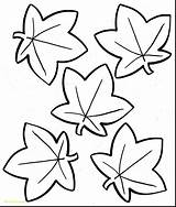 Oak Leaf Coloring Pages Getcolorings Printable sketch template