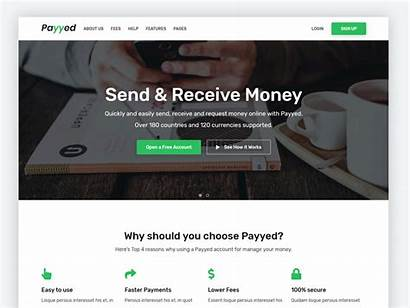 Website Money Transfer Homepage Payments Send Suitable