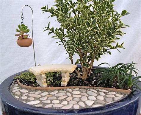 zen garden kit mini indoor vegetable garden inspiration