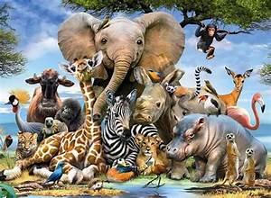 Animais da África com Fotos: Sobre as Espécies e Safáris ...