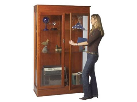 Display Cabinets, Trophy Cases, And Showcases Catalytic Fireplace Inserts Dimplex Optimyst Buy Bio Ethanol Desa Manual Arched Fireplaces 33 Electric Insert Houzz Mantels Small Gas For Bedrooms