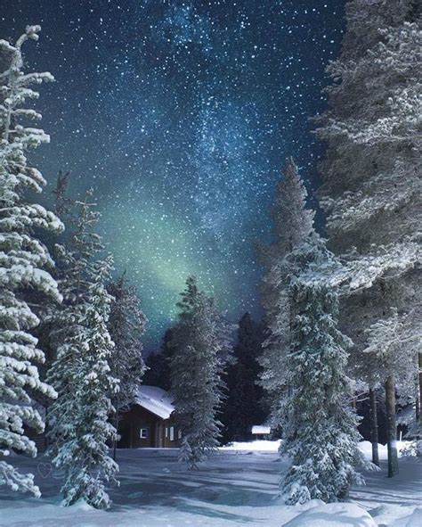 pinterest emilybytheocean Winter Wonderland #