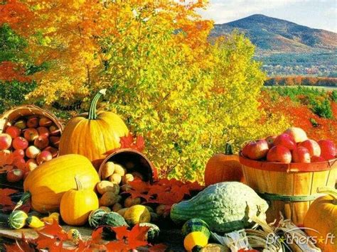 fall themes download free fall theme fall theme download