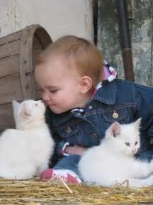 cats and babies baby a kitten dump a day